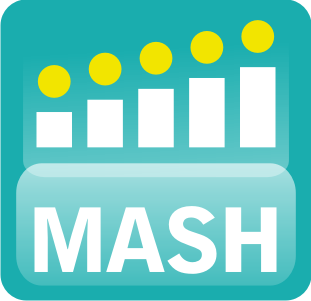 internship in Mash Project