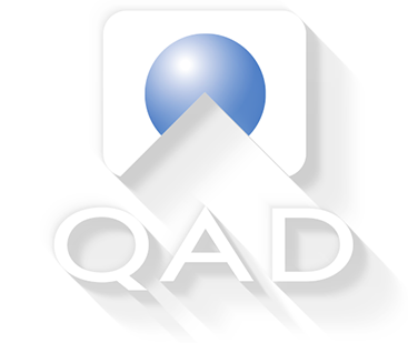 internship in QAD India Private Limited
