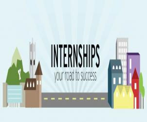 Why do students apply for summer internships in India?